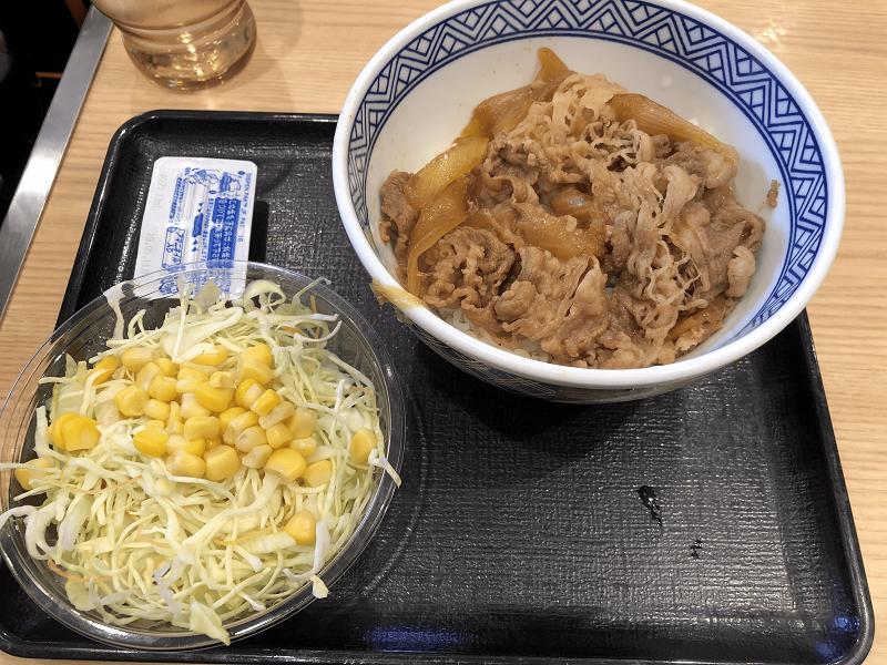 吉野屋の牛丼小盛とサラダ