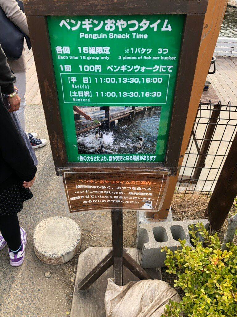 神戸どうぶつ王国のペンギンおやつタイム